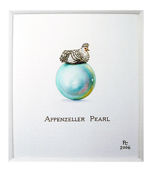 The Appenzeller Pearl